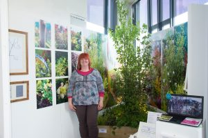 BA Hons Garden Art and Design Exhibition 2015